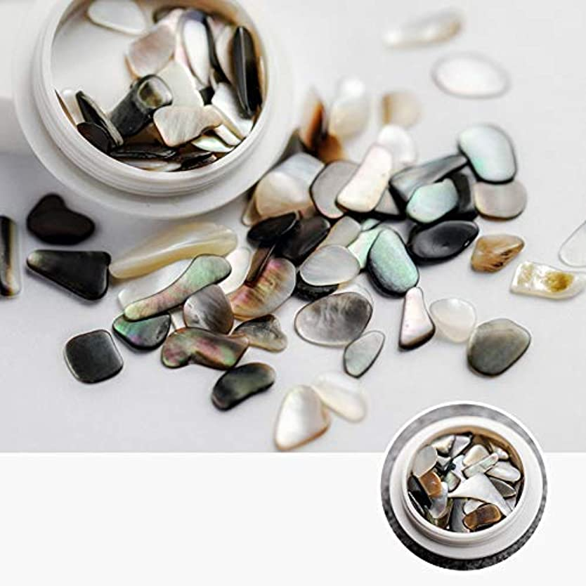 窓ケント乳製品ネイル石パーツ ネイル貝殻風 シェル 貝 レジン ジェルネイル ネイルアート ネイルパーツ (5)