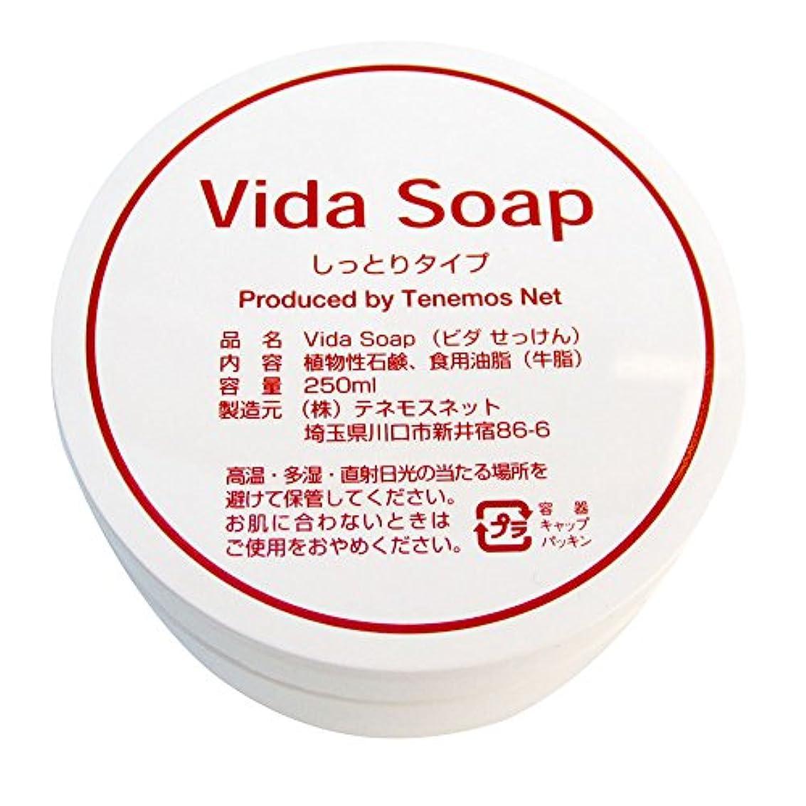 タッチ害影響するテネモス ビダせっけん Vida Soap しっとりノーマル 動物性 250ml