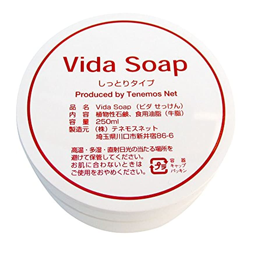 ぴったりボール種をまくテネモス ビダせっけん Vida Soap しっとりノーマル 動物性 250ml