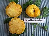 【SEED】Heirloom Tomato® Merveille Blanche エアルーム・トマト・メルベル・ブランシェ(10 seeds)W-15