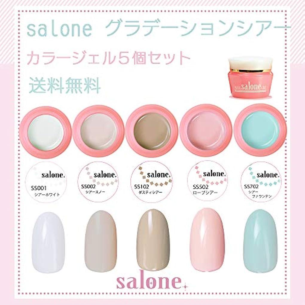 リスクアンドリューハリディつかの間【送料無料 日本製】Salone グラデーションシアー カラージェル5個セット グラデーションにもピッタリなカラー
