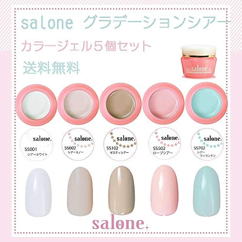 彼らは渦記念【送料無料 日本製】Salone グラデーションシアー カラージェル5個セット グラデーションにもピッタリなカラー