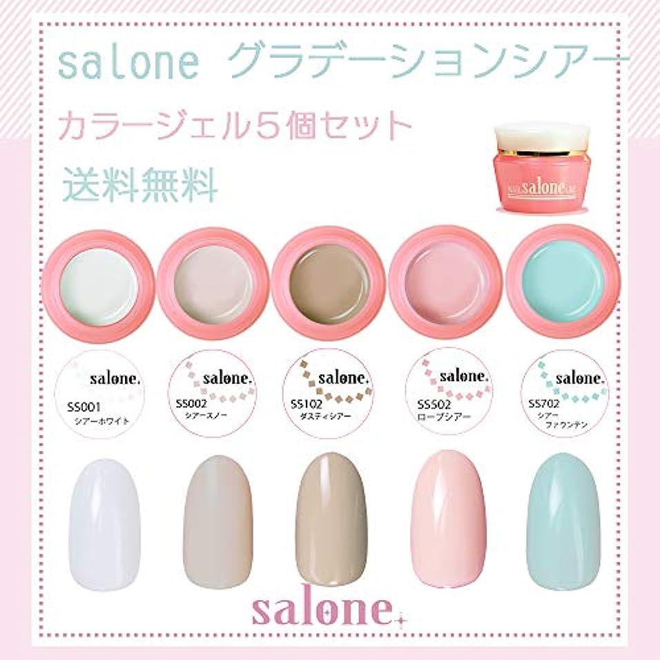 落ち込んでいる広範囲に十分【送料無料 日本製】Salone グラデーションシアー カラージェル5個セット グラデーションにもピッタリなカラー