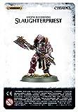 [ウォーハンマーファンタジー]Warhammer Fantasy - Age of Sigmar - Khorne Warhammer 40K Age of Sigmar Khorne Bloodbound Slaughterpriest 83-31 [並行輸入品]
