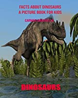 Facts About Dinosaurs A Picture Book For Kids