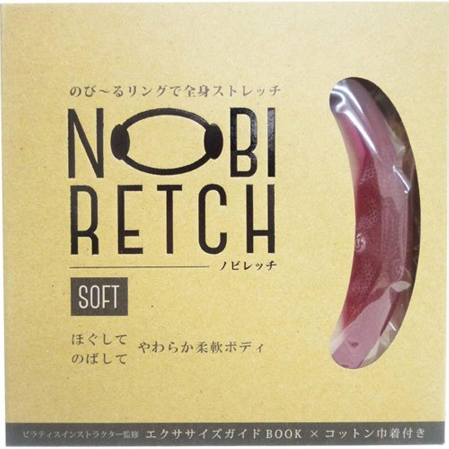 応答不健全言い聞かせるReシリーズ ノビレッチ SOFT 100g