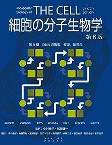 細胞の分子生物学 第6版 第5章 DNAの複製,修復,組換え 細胞の分子生物学 第6版