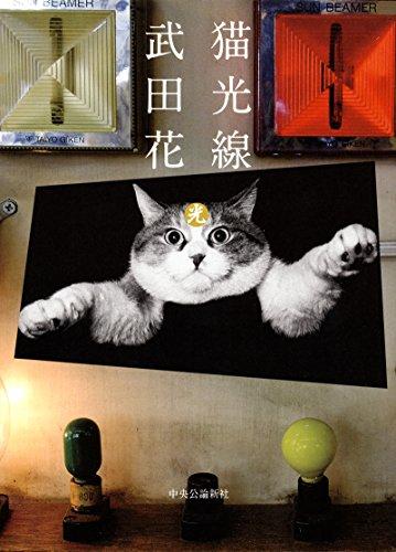 猫光線の詳細を見る