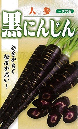 フタバ種苗 【一代交配】 黒にんじん (人参) コート種子300粒入