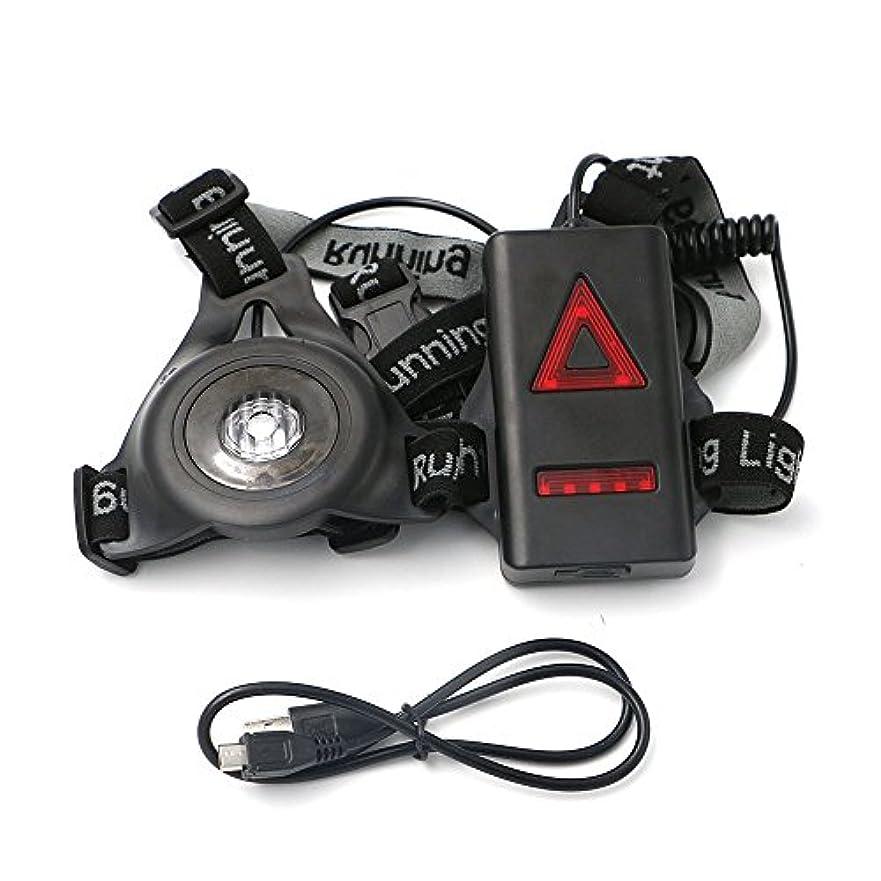 非常に怒っていますダイジェストアーティストLEDランニングライト 250ルーメン USB充電 防水 Regoss (レジス) 懐中電灯 屋外LEDチェストライト 再充電可能 ナイト 懐中電灯 取り外し可能 固定バンド付き キャンプ用 ハイキングランニング