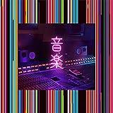 音楽 (初回生産限定)(2枚組)[Analog]
