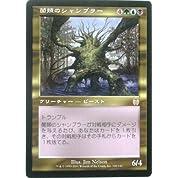 マジック:ザ・ギャザリング MTG 菌類のシャンブラー 日本語 (AP) #010057 (特典付:希少カード画像) 《ギフト》