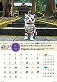 ウイング 旅猫ニャン吉 旅日記 2019年 カレンダー CL-380 壁掛け 52×36cm 猫 画像