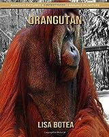 Orangutan: Amazing Pictures & Fun Facts on Animals in Nature
