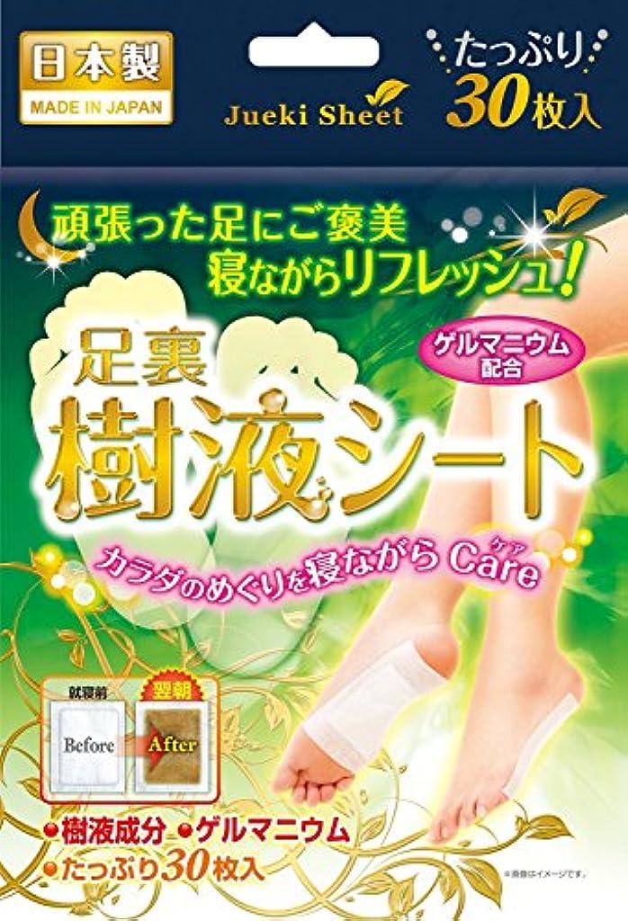 印をつけるシプリー進化鈴木油脂工業 足裏樹液シート 30枚入×4
