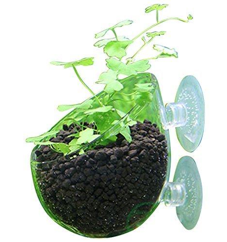アクア スカイ ガーデン 水槽 水草 植木鉢 庭 熱帯魚 観賞魚 水草 飼育 水槽の インテリア に