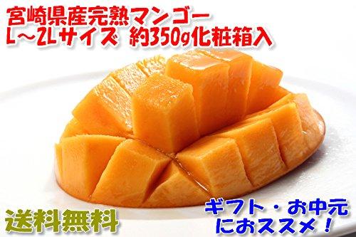 宮崎マンゴー 贈答向け 2Lサイズ 約350g化粧箱入