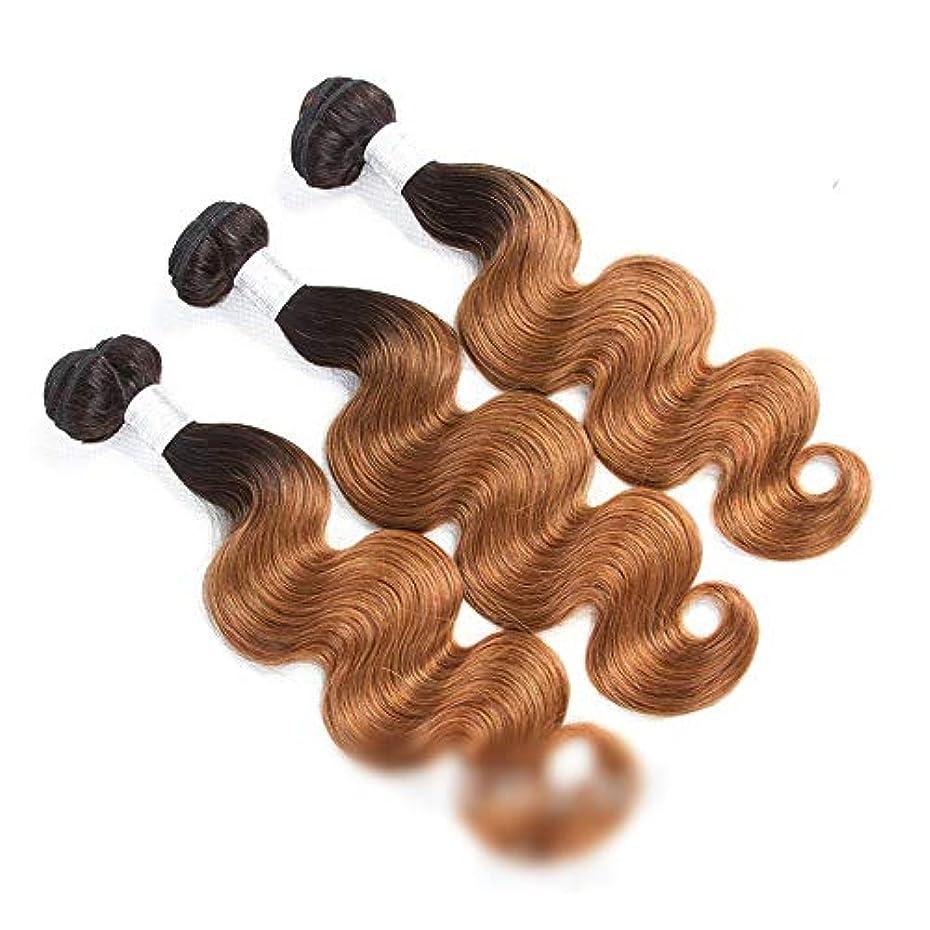未来あなたが良くなります剥ぎ取るYESONEEP 人毛エクステンションボディウェーブよこ糸1B / 30 2トーンカラー(10インチ-26インチ、110g)ロングストレートウィッグウィッグ (色 : ブラウン, サイズ : 26 inch)