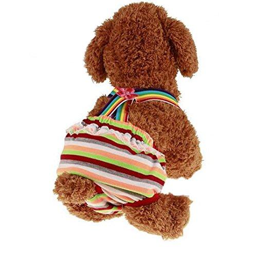 ふく福 夏かわいい ペット犬用 生理 サニタリパンツ かわい...
