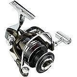 釣り用リール スピニングフィッシングリール12 + 1ベアリング左右交換ハンドルダブル海水淡水釣り用ダブルドラッグブレーキシステム (サイズ : 2000)