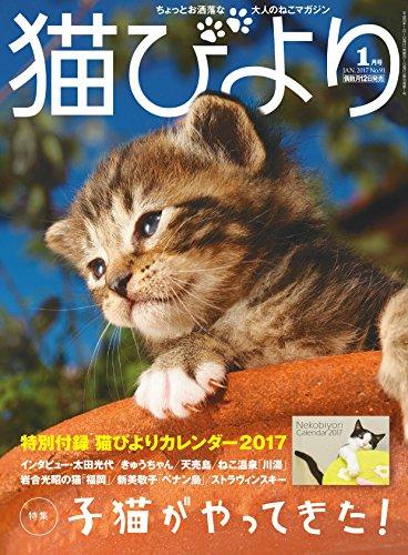 猫びより2017年1月号 Vol.91の詳細を見る