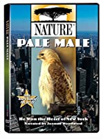 Nature: Pale Male [DVD] [Import]
