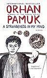 A Strangeness in My Mind (Vintage International)