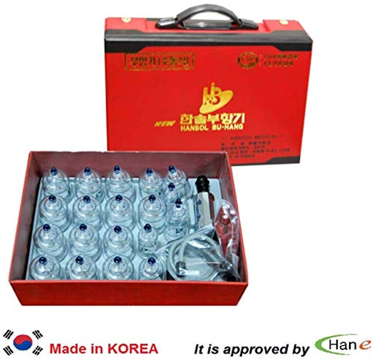 ルート故意に引き渡す韓国カッピングセット19カップハンディケース付属カッピングマッサージ真空吸引
