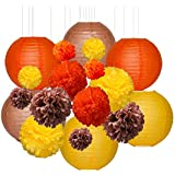 HENMI ティッシュペーパーポンポン フラワーボール12個とペーパーランタン 6個 秋 収穫 デコレーション 誕生日パーティー 装飾 3サイズ
