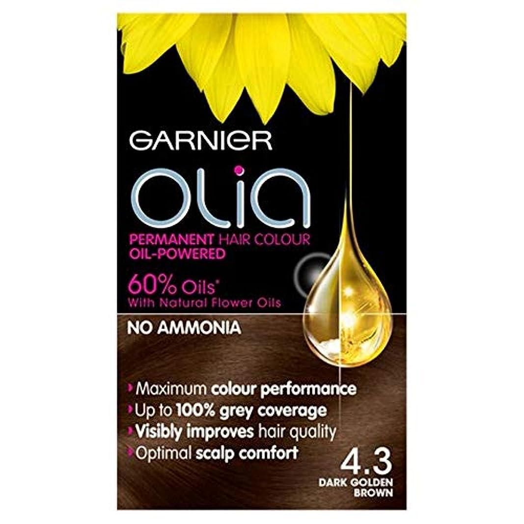 共同選択仮称投資する[Garnier] 4.3濃い黄金色に永久染毛剤Oliaガルニエ - Garnier Olia 4.3 Dark Golden Brown Permanent Hair Dye [並行輸入品]