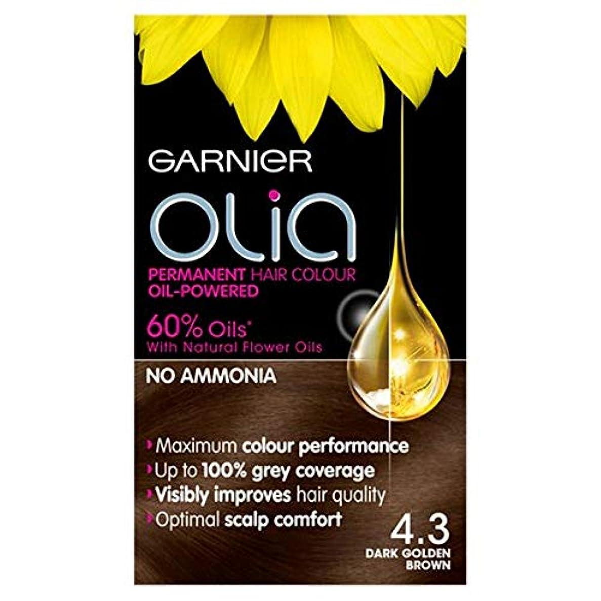 一時停止性格うねる[Garnier] 4.3濃い黄金色に永久染毛剤Oliaガルニエ - Garnier Olia 4.3 Dark Golden Brown Permanent Hair Dye [並行輸入品]