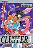 Cluster―12 world adventure story (3)