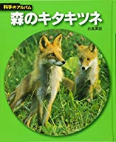 森のキタキツネ (科学のアルバム)