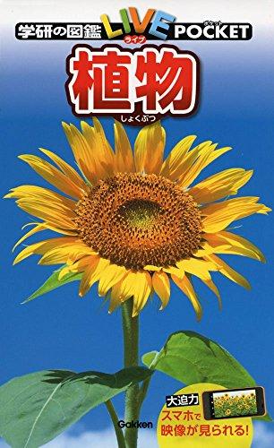 学研プラス『学研の図鑑 LIVE POCKET 植物』