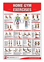 Home Gym Exercises Laminated Poster/Chart: Home Gym Chart Home Gym Weight Lifting Routine Weight Stack Gym Chart BodySolid Gym Poster ... Selectorized Gym Poster Exercises poster