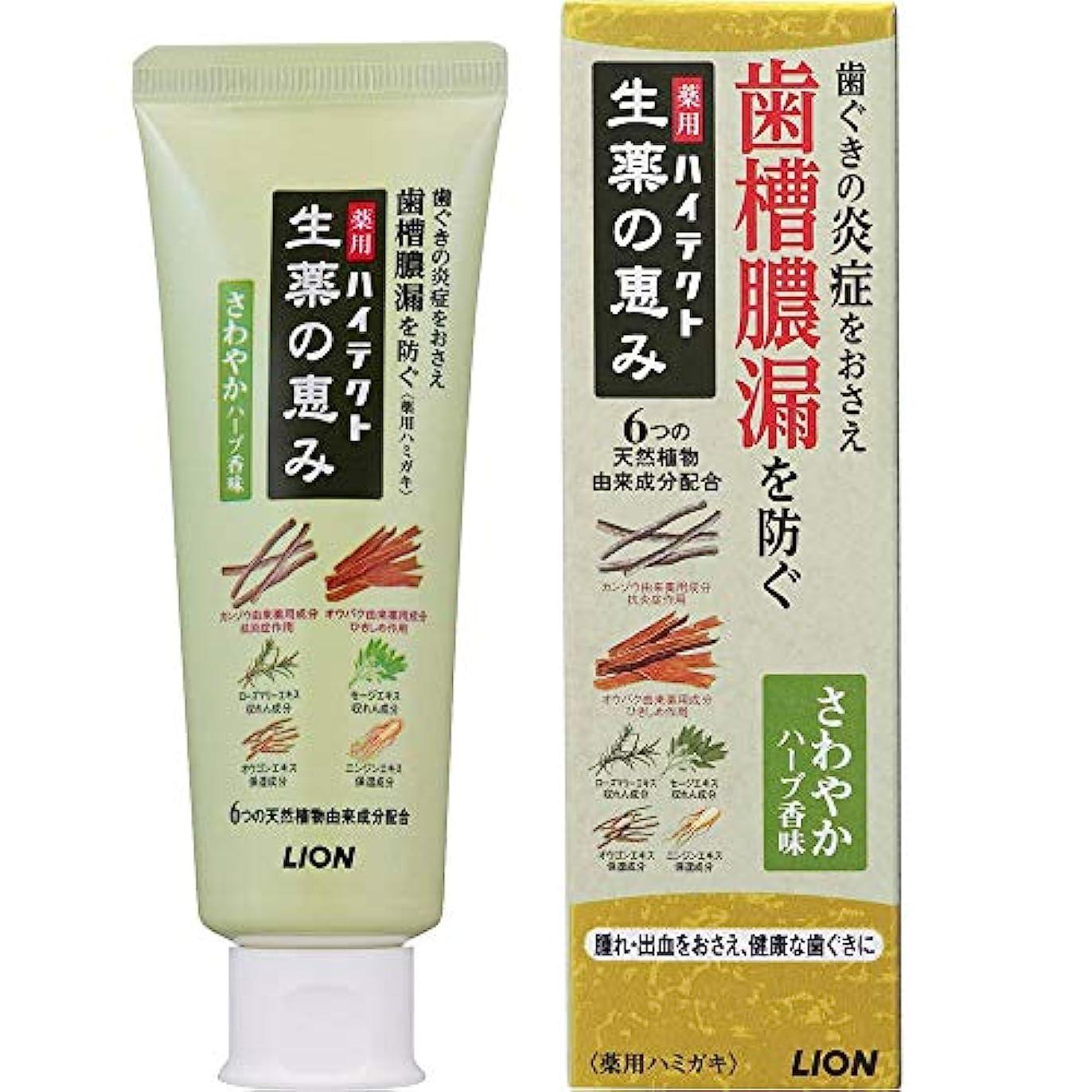 から歯科のアルミニウム薬用ハイテクト生薬の恵み さわやかハーブ香味 90g