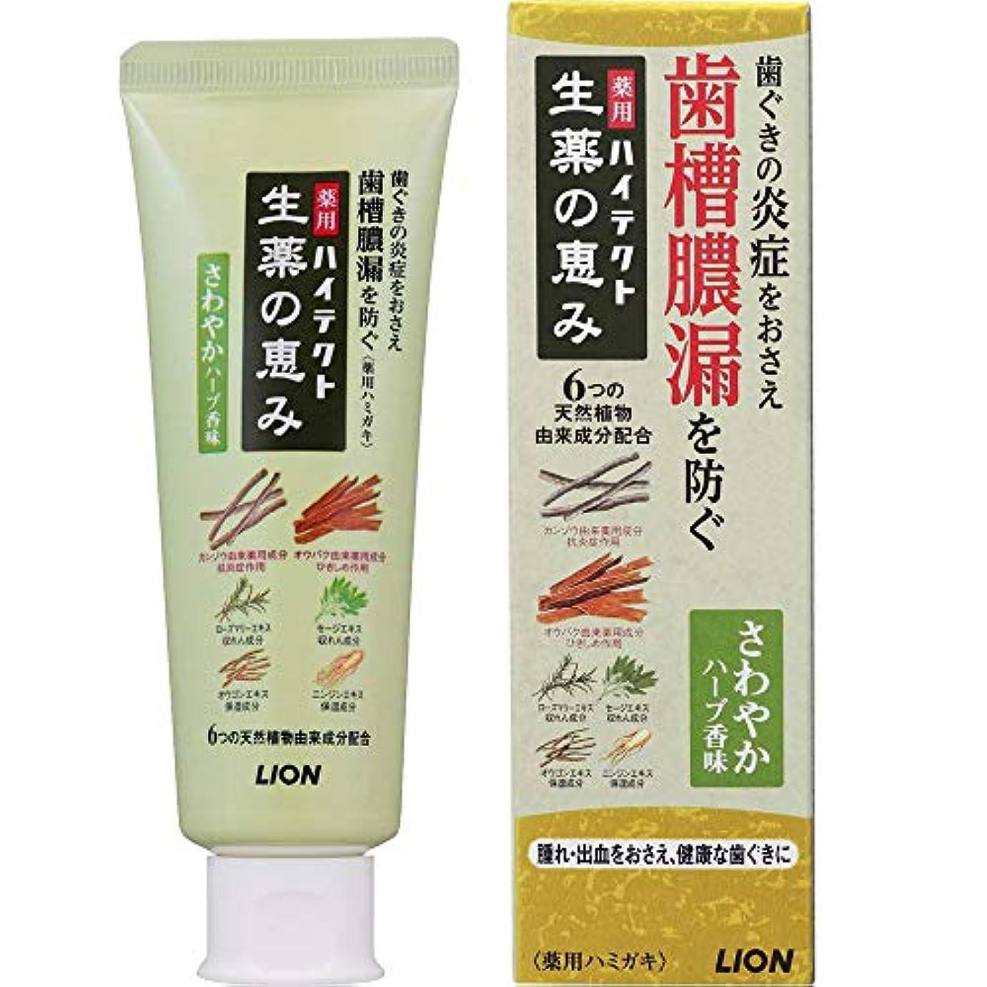忠実なメッシュアーサー薬用ハイテクト生薬の恵み さわやかハーブ香味 90g (医薬部外品)
