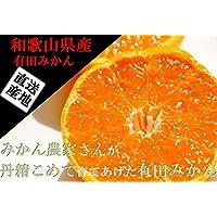 みかん 和歌山有田産 混合サイズ (5kg)