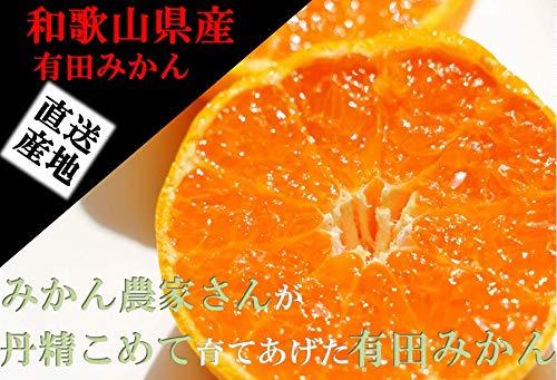 みかん 和歌山有田産 混合サイズ (3kg)