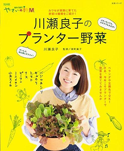 川瀬良子のプランター野菜 (生活シリーズ NHK趣味の園芸やさいの時間)の詳細を見る