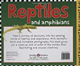 Reptiles and Amphibians (Smart Kids) 画像