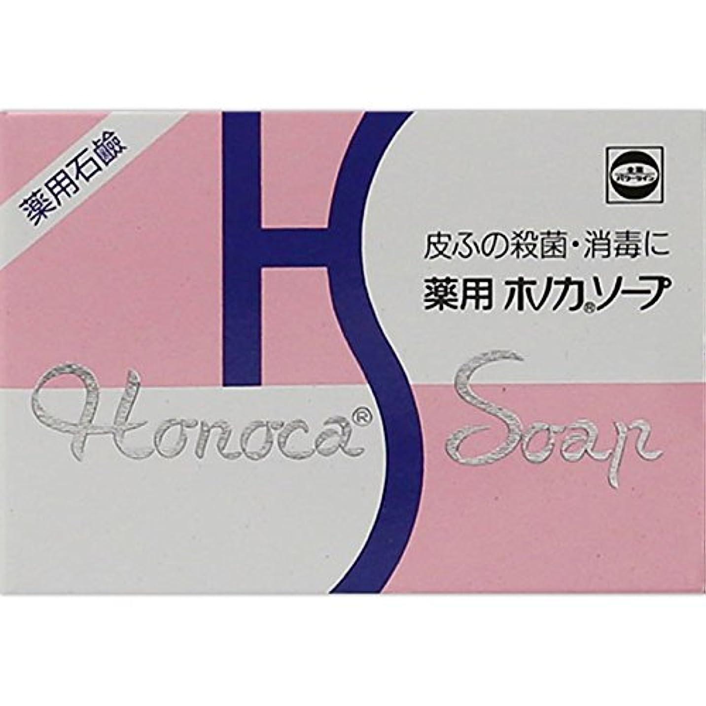 緊張脅威安価な薬用ホノカソープ 80g