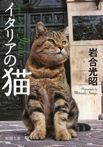 イタリアの猫 (新潮文庫)の詳細を見る