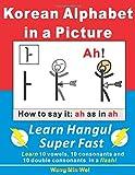 Korean Alphabets in a Picture: Learn Korean Alphabets (Hangul) Super Fast 画像