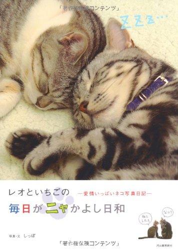 レオといちごの毎日がニャかよし日和―愛情いっぱいネコ写真日記の詳細を見る