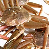 セイコガニ 活 北海道産 香箱ガニ せいこ蟹 せいこがに セコガニ 訳あり たっぷり4kg詰(13-25尾)身入り7分前後