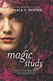 Magic Study (Soulfinders Book 2) (English Edition)