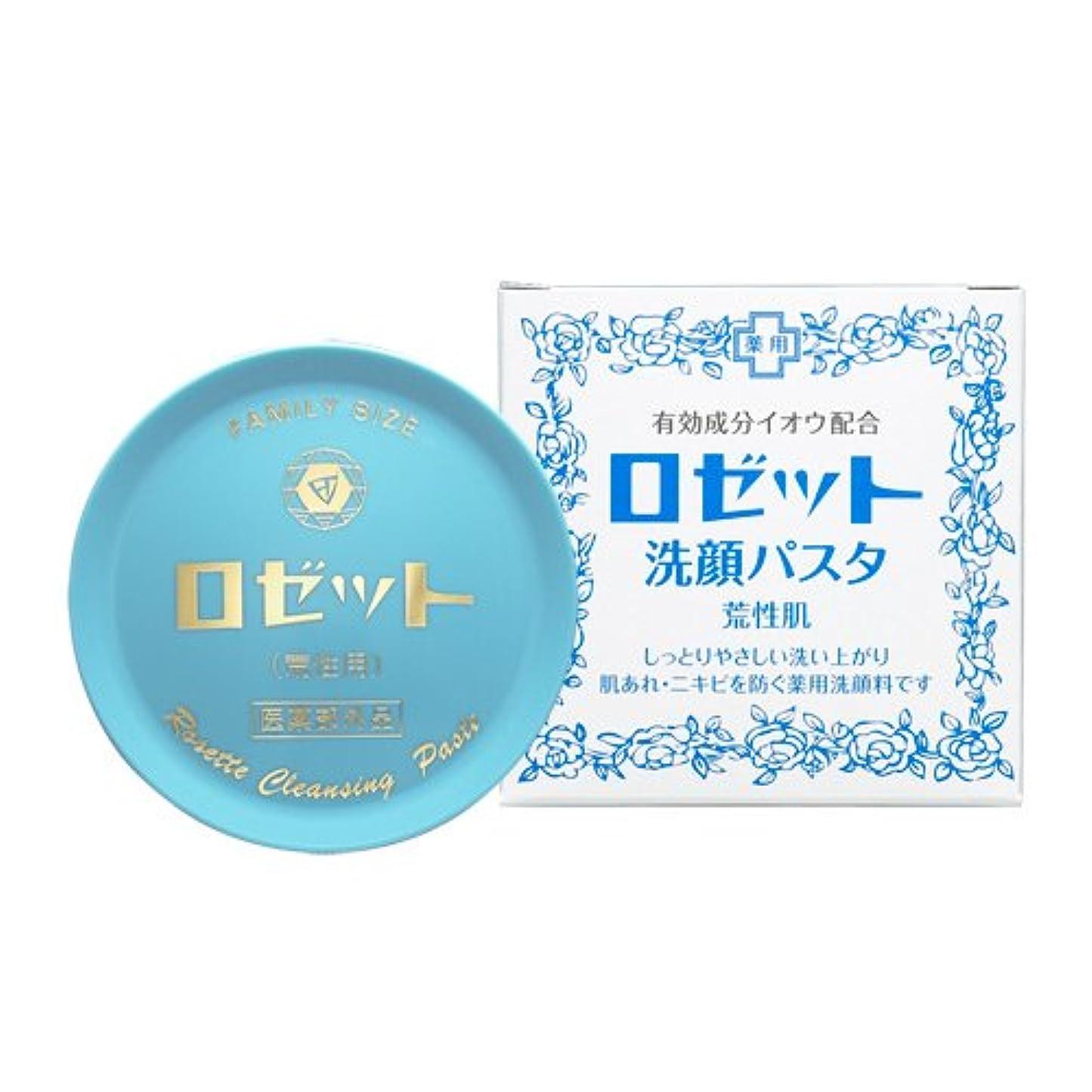 惑星先例アーティストロゼット洗顔パスタ 荒性肌 90g (医薬部外品)