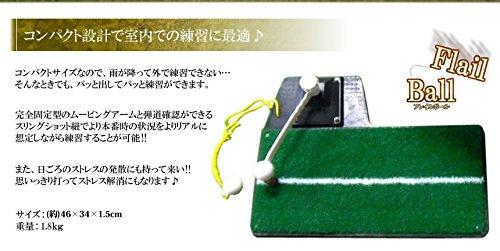 MIRAIS ゴルフ 練習用 スイングマット ゴルフ用品 ティーショット フリーショット ターンショット MR-GOLSWIN