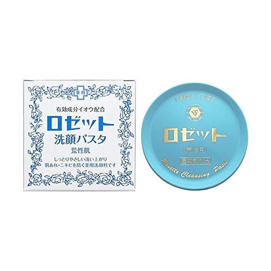 企業強大な話【お徳用 5 セット】 ロゼット 洗顔パスタ 荒性肌 90g×5セット